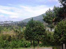 villa ariza0102 212x160 - Villa Ariza 4 Kamar